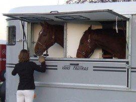 Ouverture Estivale donnant accès à la tête des chevaux et aux mangeoires intégrées.
