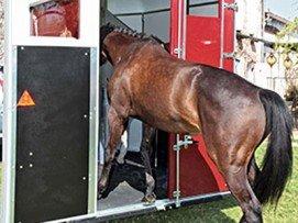 2 portes arrière qui canalisent les chevaux avec Plancher Progressif™ (brevet FAUTRAS) pour un embarquement facile. L'ouverture sans pont évite de se baisser et offre la possibilité de reculer devant le box.